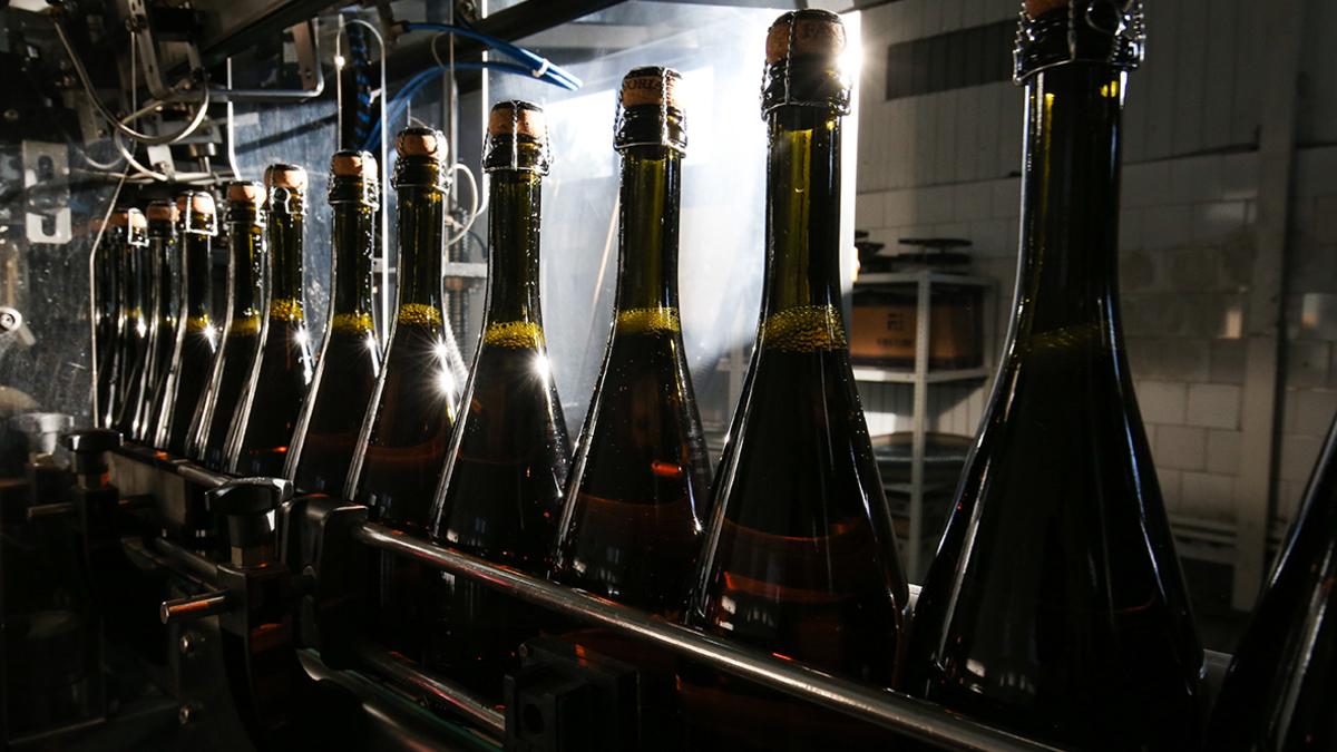 вино производство