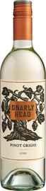 Вино белое полусухое «Gnarly Head Pinot Grigio»