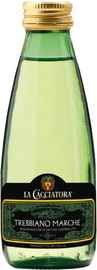Вино белое сухое «La Cacciatora Trebbiano Marche» 2019 г.
