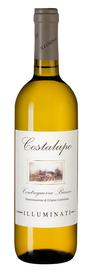 Вино белое сухое «Costalupo Controguerra» 2019 г.