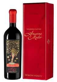 Вино красное полусухое «Domini Veneti Mater Amarone della Valpolicella Classico Riserva» 2012 г. в подарочной упаковке