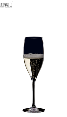 Фужер « Champagne Glass XL 447/28»
