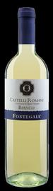Вино белое сухое «Fontegaia Castelli Romani Bianco» 2013 г.