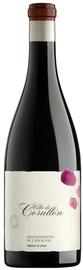 Вино красное сухое «Descendientes de Jose Palacios Villa de Corullon» 2013 г.