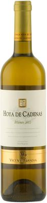 Вино белое полусухое «Vicente Gandia Hoya de Cadenas Blanco Utiel-Requena» 2012 г.