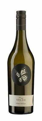 Вино белое сухое «Bioweingut Johannes ZillInger Velue Gruener Veltliner» 2015 г. с защищенным географическим указанием