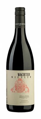 Вино красное сухое «Wachter Wiesler Bela Joska Blaufraenkisch» 2013 г. с защищенным географическим указанием