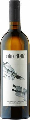 Вино белое сухое «Anima Ribelle Beneventano Falanghina» с защищенным географическим указанием