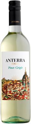 Вино белое сухое «Anterra Pinot Grigio» 2015 г.