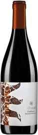 Вино красное сухое «Ca'Tullio Patriarca Refosco dal Peduncolo Rosso»