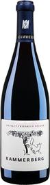 Вино красное сухое «Pfalz Becker Kammerberg Spatburgunder DQ GG» 2007 г.